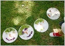 jardinbotanico_ninos2
