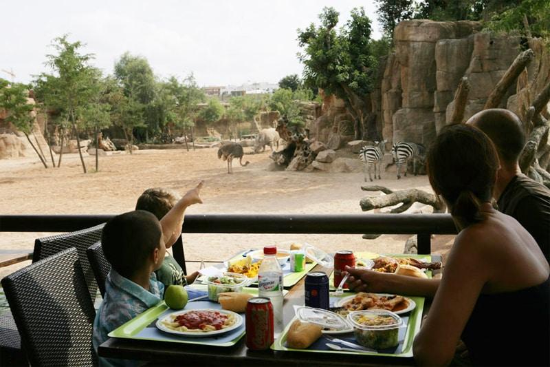 fin de semana en Valencia con niños - bioparc