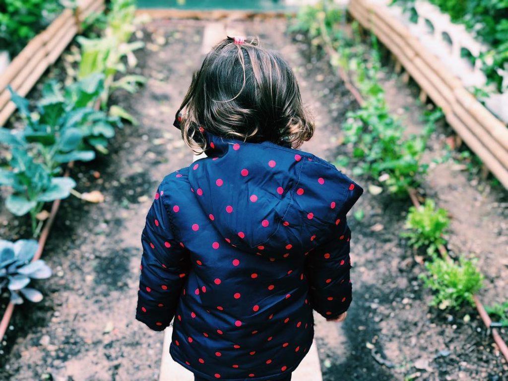 Escuelas de Pascua E.I. Ciudad Jardín Montessori