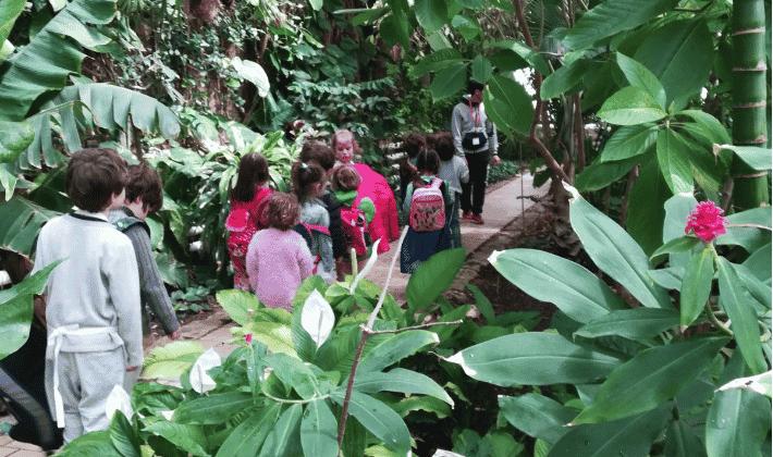 Escuelas de verano en Valencia - El Botànic