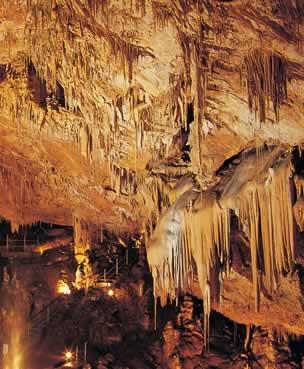 Visita guiada a la Cueva del Rull
