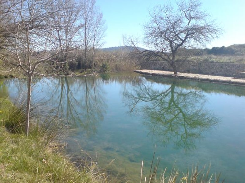 excursión a Chella
