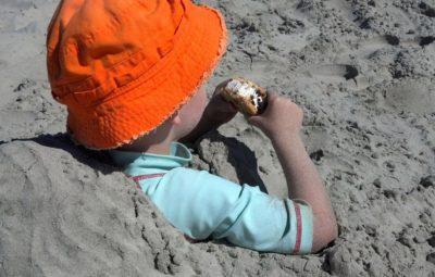 Picnic Playa