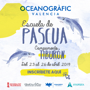 Oceanografic - Escuela de Pascua