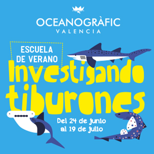 Oceanografic - escuela verano