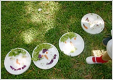 actividad en jardin botanico