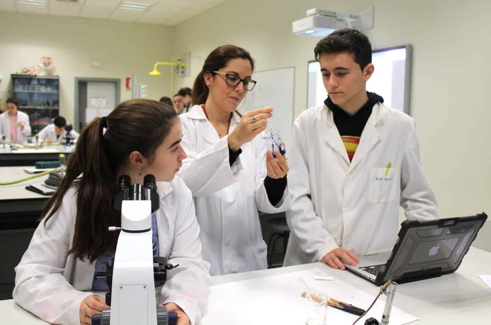 Colegio Mas Camarena