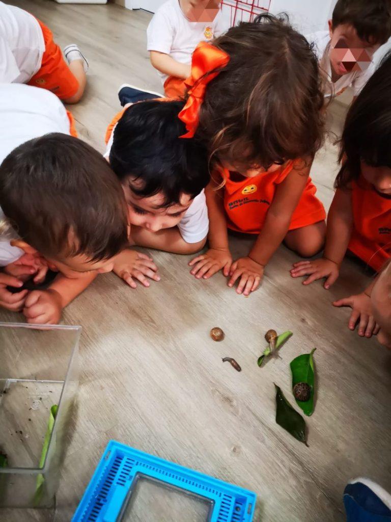 Escuela Infantil Babilandia